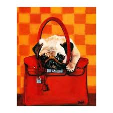 Dog on top on a Hermes Birkin bag